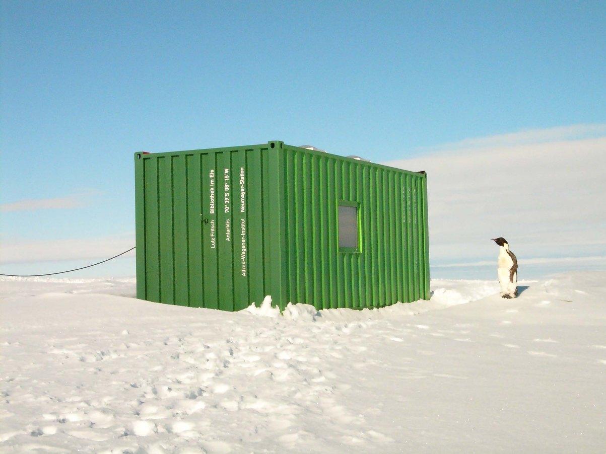 Bibliothek im Eis | Pinguin, Foto: Lutz Fritsch, 2007